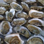 Oysterfest at Waterbar San Francisco Benefits Surfrider Foundation | Sept. 1
