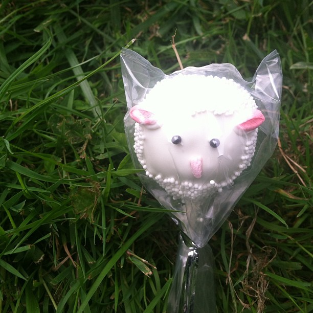 I am a cute Lambie  PopCake From #LambJam