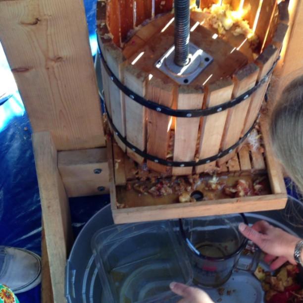 Hand pressed apple cider for #cuesa #harvest