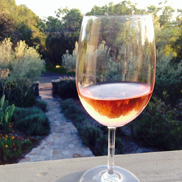 Heaven in a glass: #HomeFarm rose on a warm evening in Sonoma.