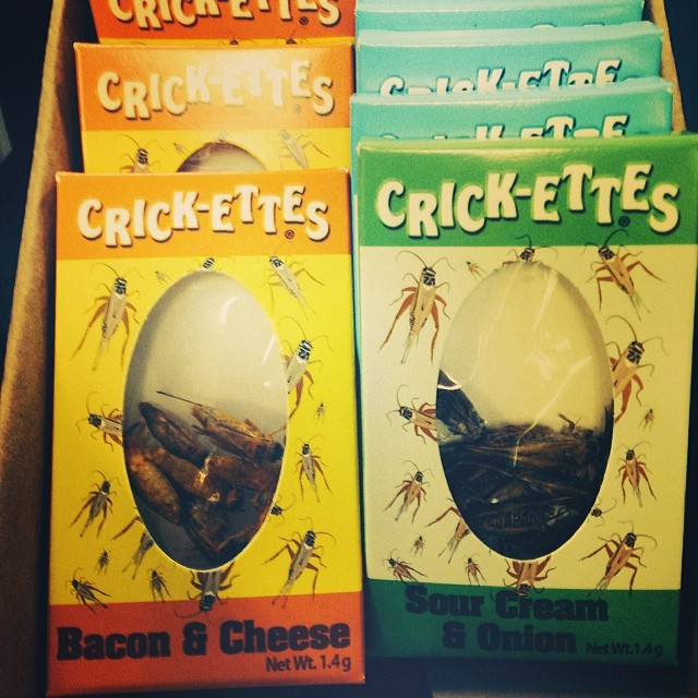 Crazy snack alert 2: bacon flavored crickettes, ya'all. Texas style.